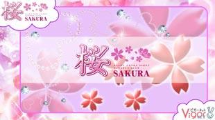 和風ツーショットキャバクラ 桜の求人CM動画